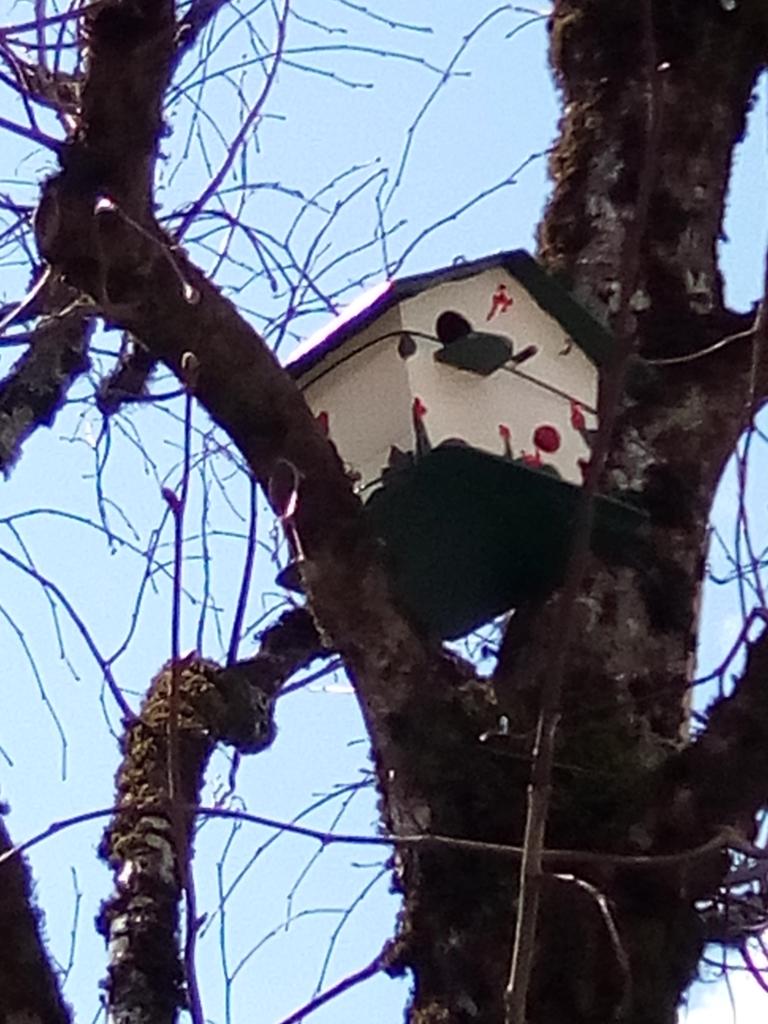 Cabane à oiseaux réalisé par des bénévoles dans la commune de rouffiac - cantal